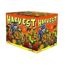 Harvest 42 rán / Ohňostroj